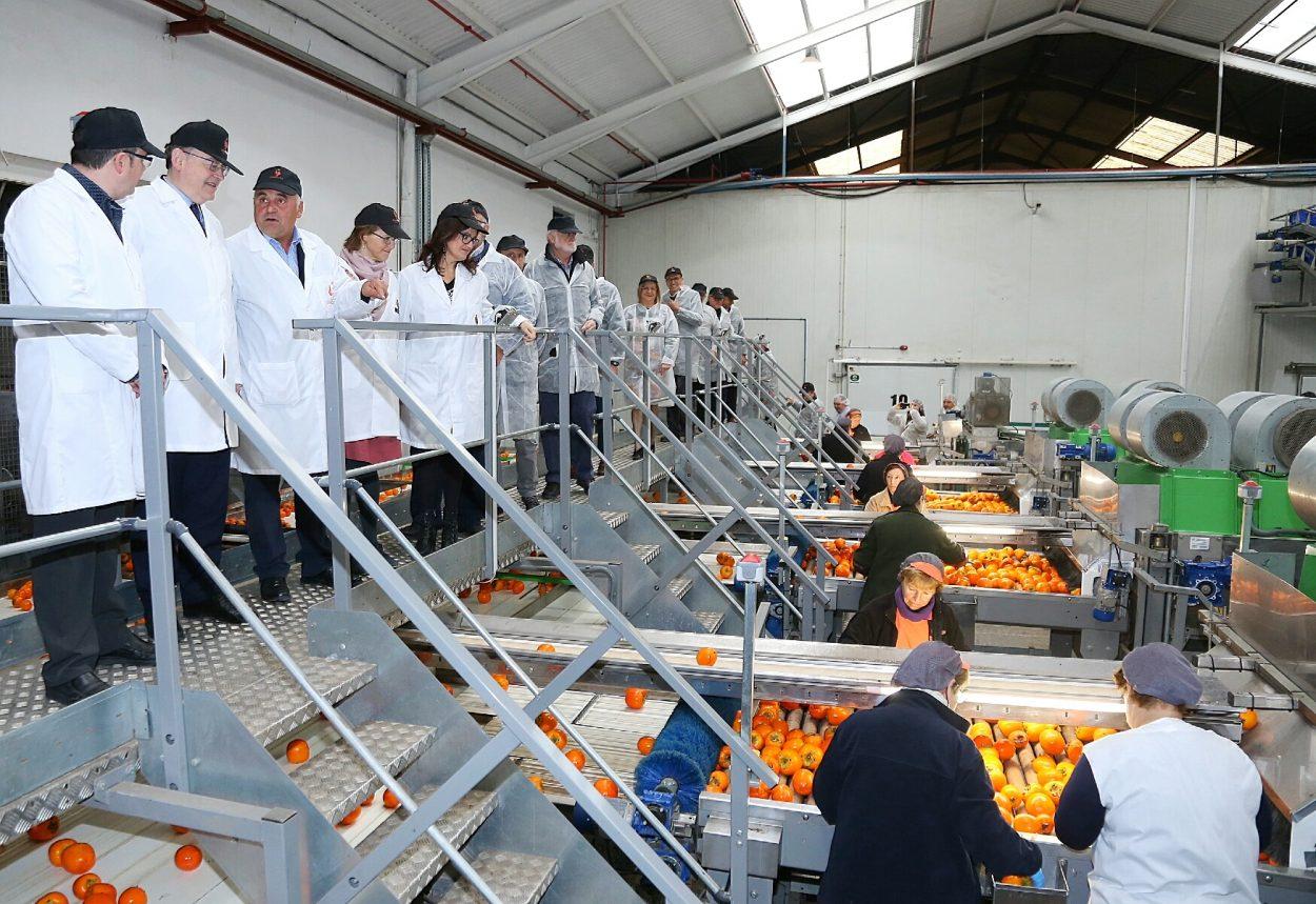 El President ha visitado la Cooperativa Agrícola Sant Bernat de Carlet