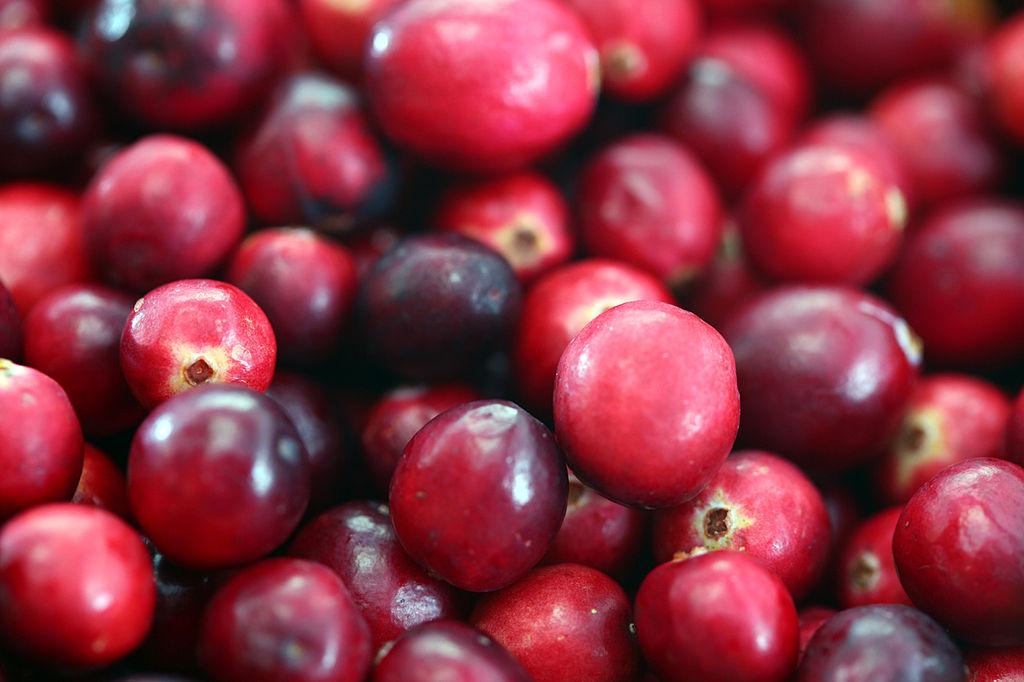 Un proyecto nacional busca fortalecer la producción y calidad del arándano