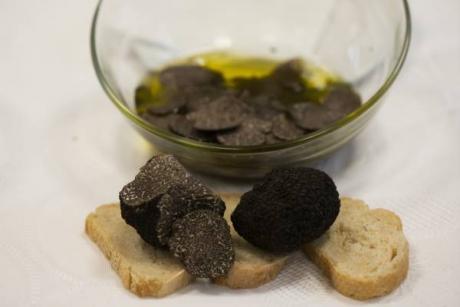 V Jornadas Gastronómicas de la Trufa del Alt Maestrat 2016