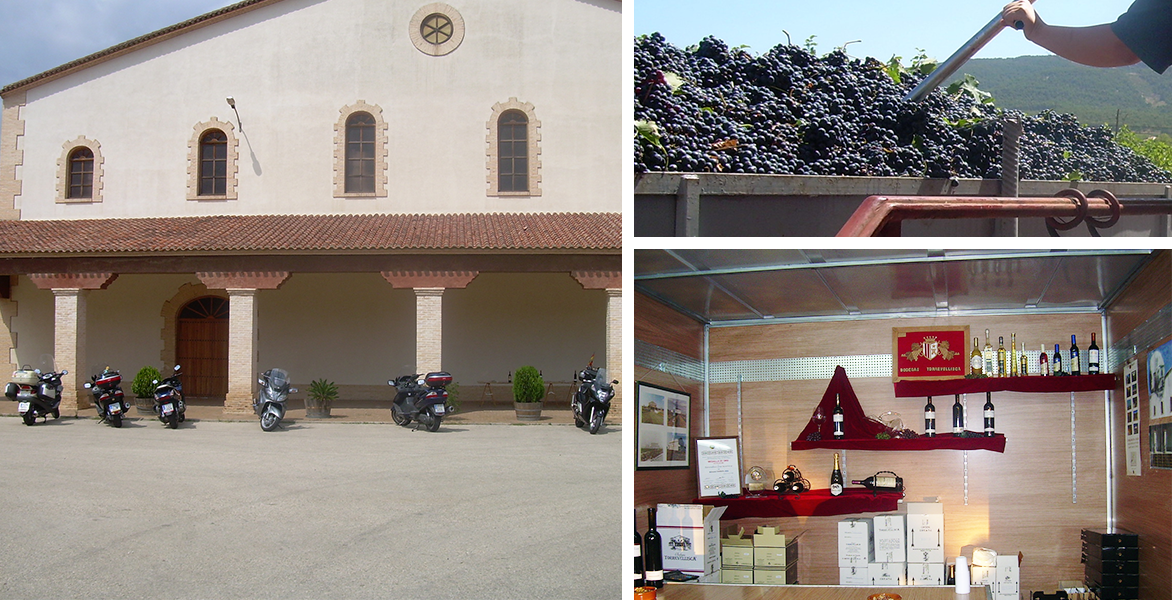 Torrevellisca afronta una nueva etapa con el lanzamiento de la colección de vinos «La Vida»