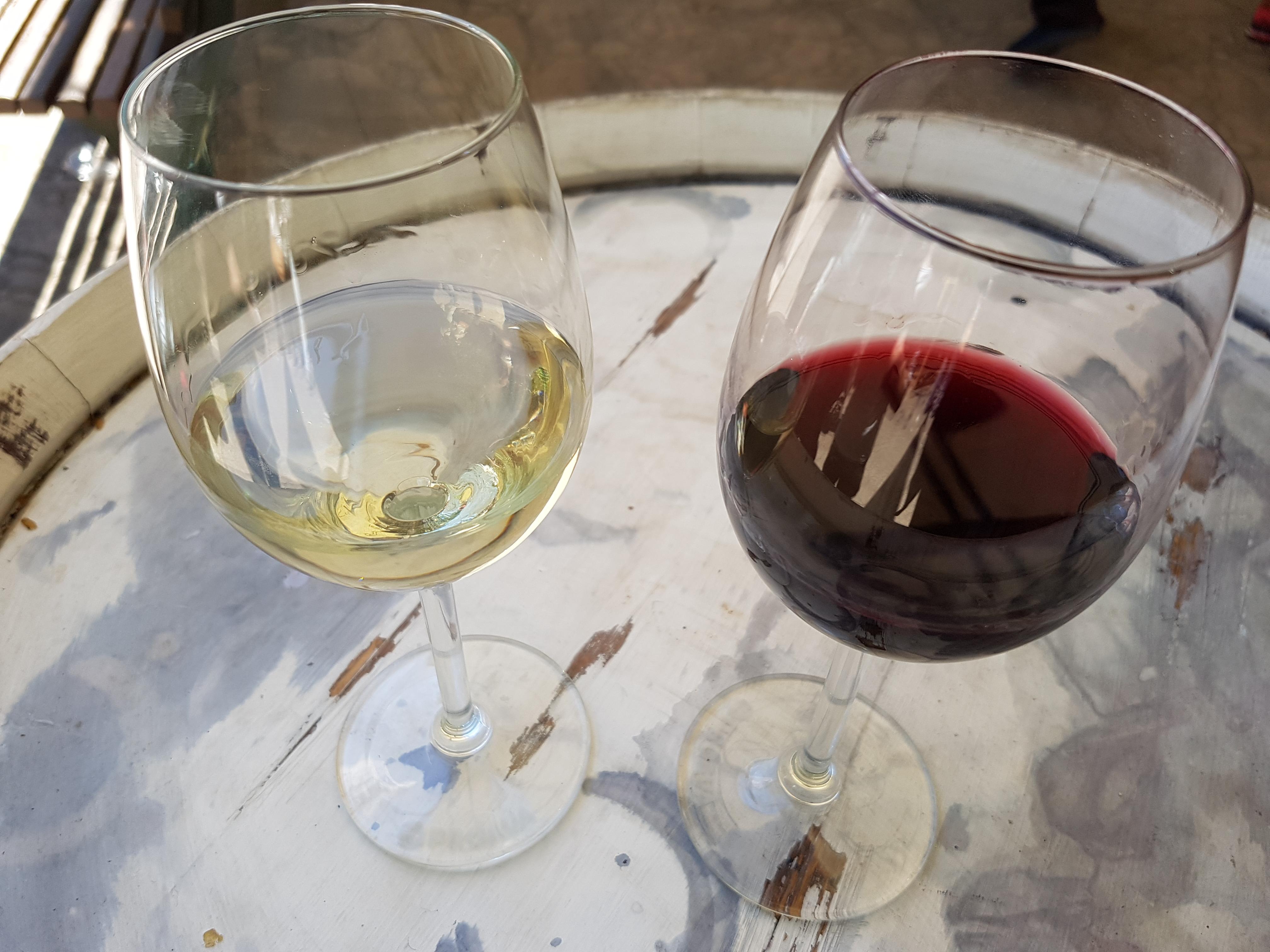Agricultura continúa buscando el consenso en el sector del vino tras el acuerdo unánime de Les Corts