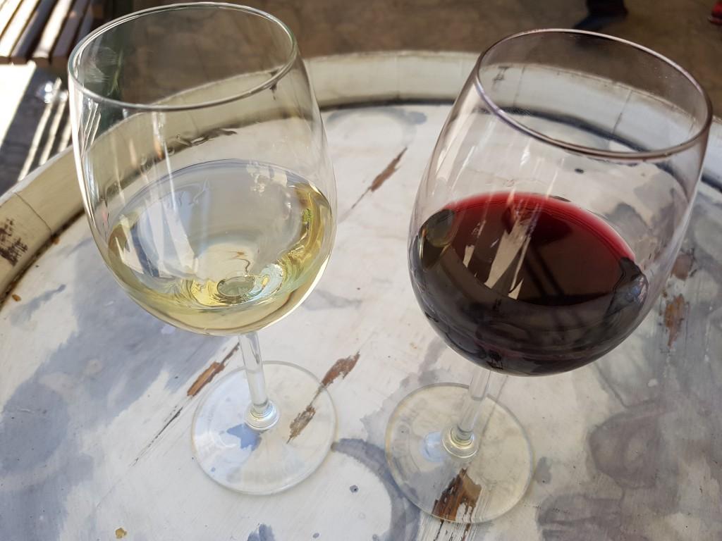 vino tinto y blanco (2)