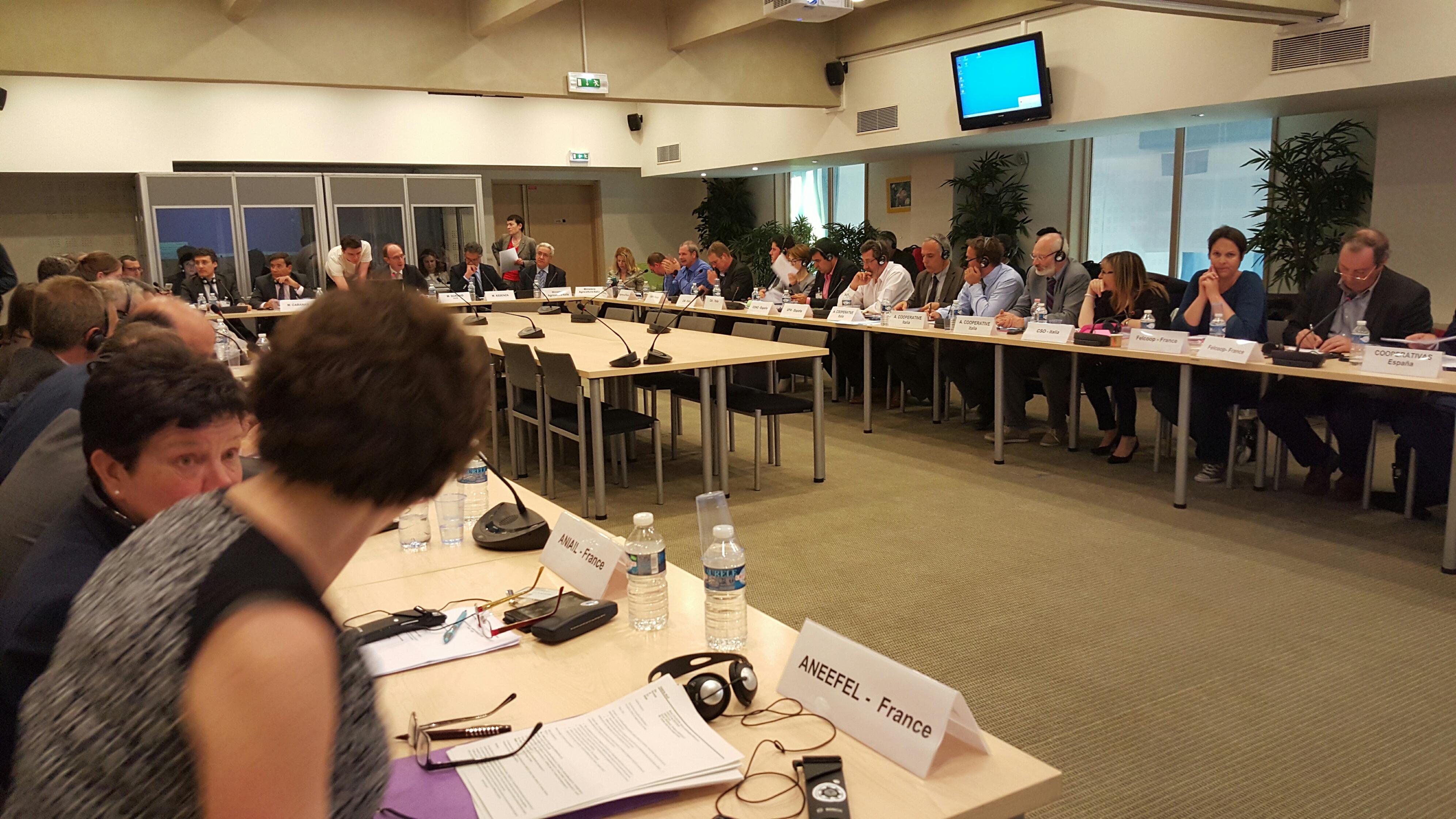 El Comité Mixto Franco-Hispano-Italiano de frutas y hortalizas analiza el desarrollo de las campañas y la situación de los mercados ImprimirRSS
