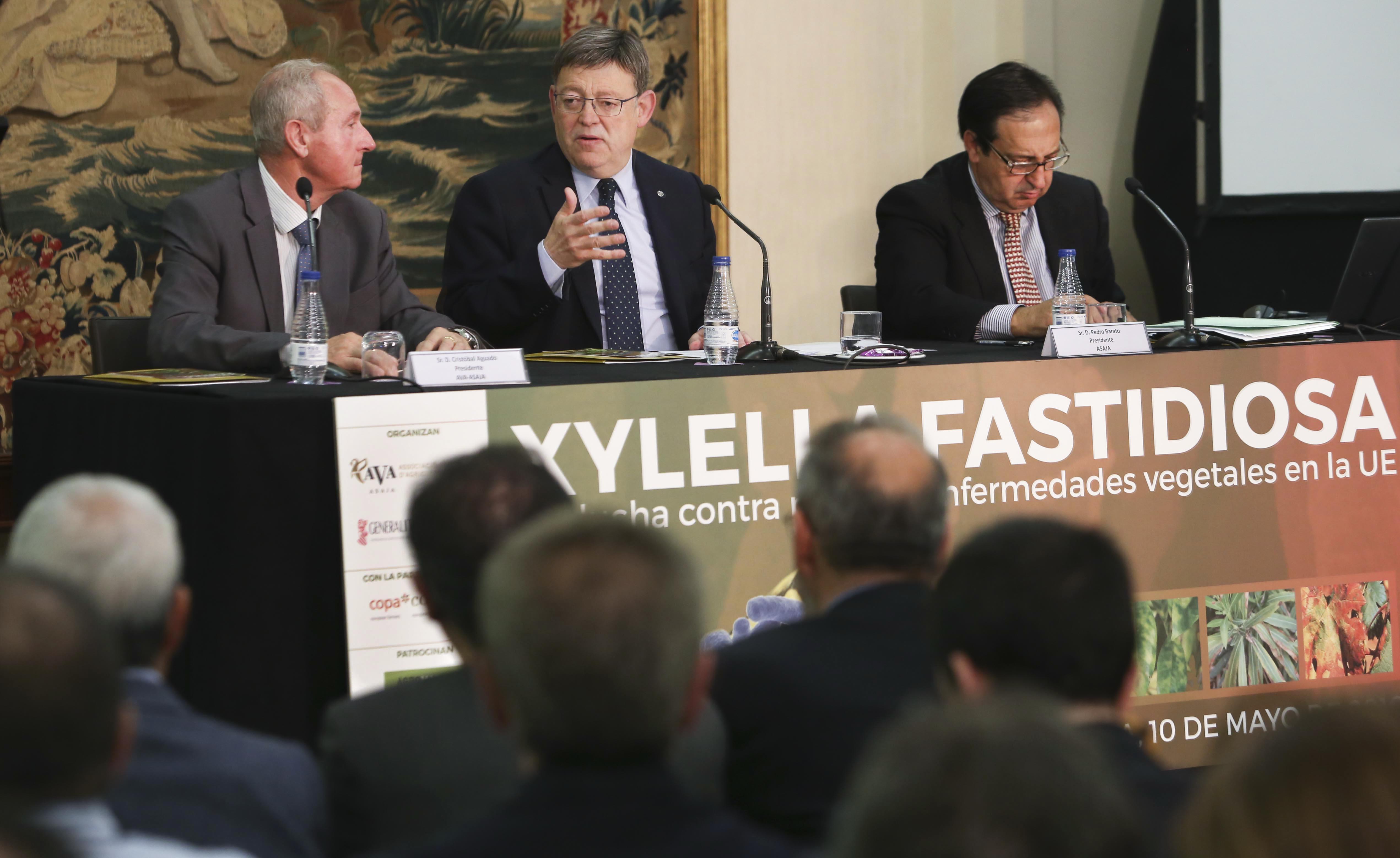 Puig destaca la necesidad de eliminar 'los riesgos que conlleva la globalización' para el sector agroalimentario