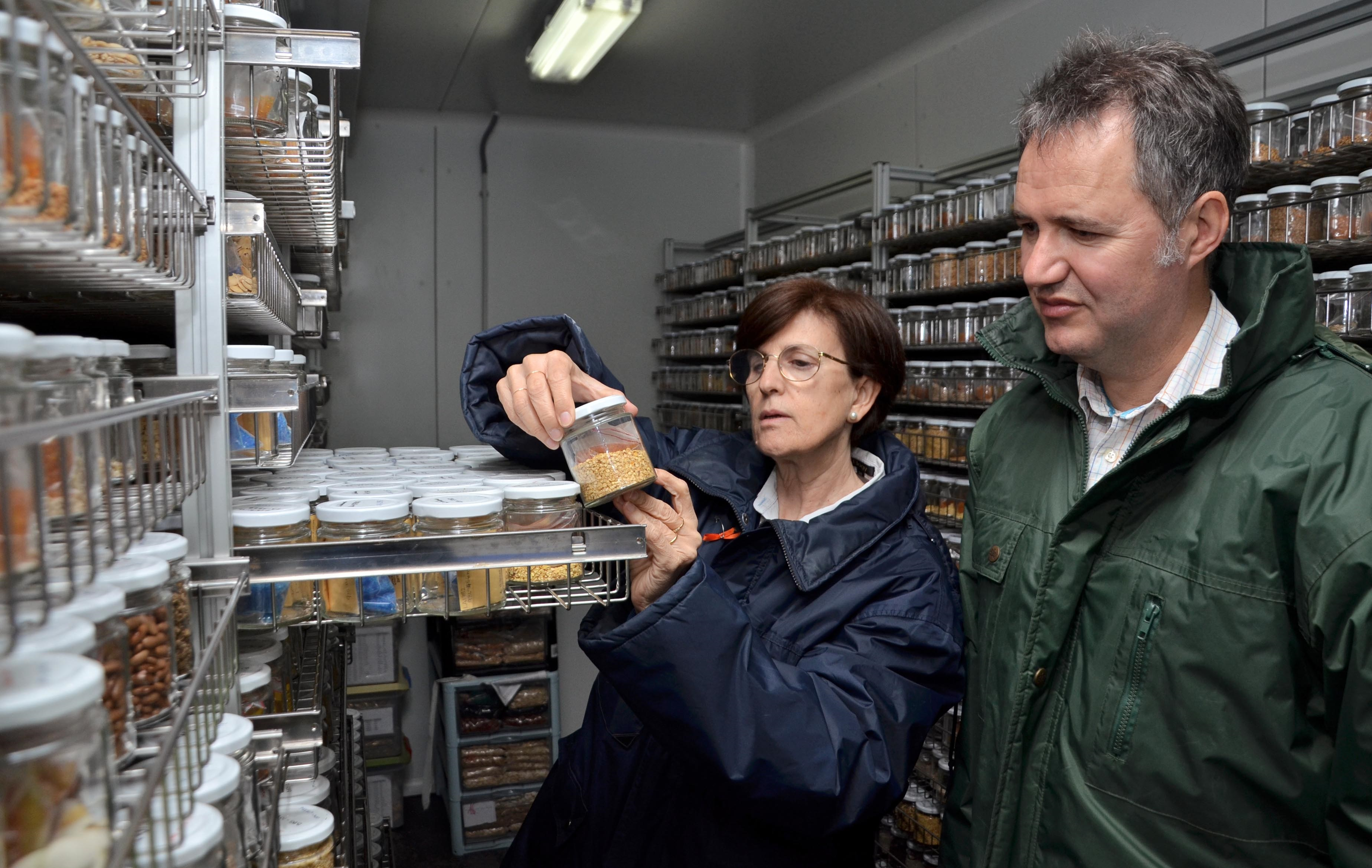 Un proyecto europeo busca mejorar el uso de recursos genéticos de tomate, patata, pimiento y berenjena