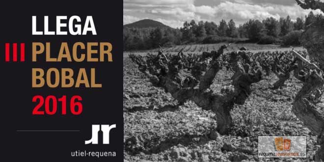 Vuelve el gran evento de la DO Utiel-Requena: Placer Bobal 2016