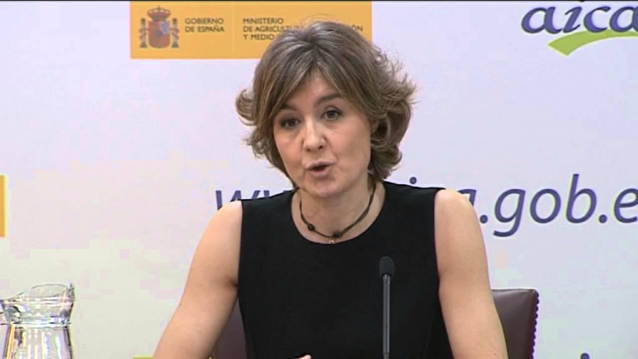 Tejerina,  ha presentado los últimos datos de la actividad de AICA