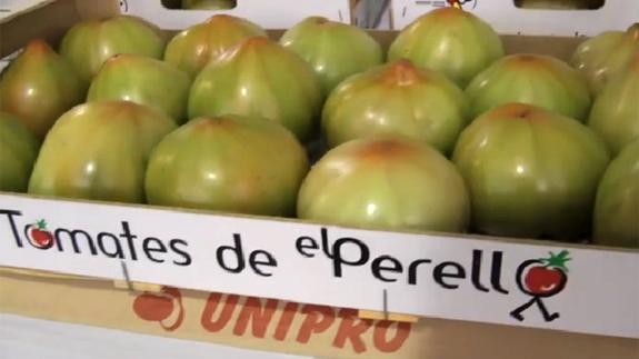 Llega la Feria Gastronómica del Tomate de El Perelló