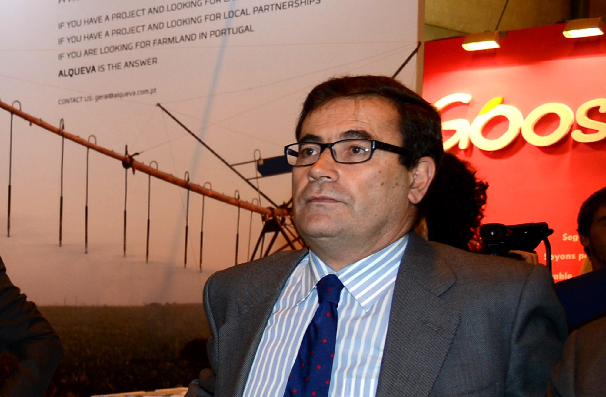 Carlos Cabanas: los vinos españoles con 131 figuras de calidad incrementan progresivamente su reconocimiento internacional