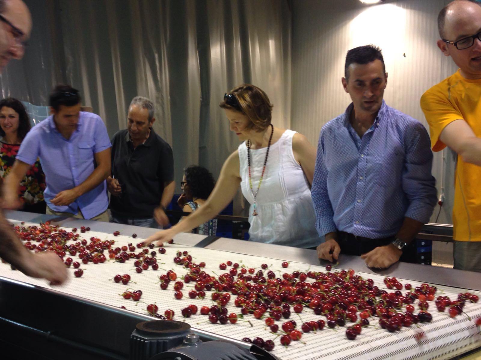 Elena Cebrián muestra en la Fiesta de la Cereza de La Vall de Gallinera el apoyo al sector y al desarrollo rural