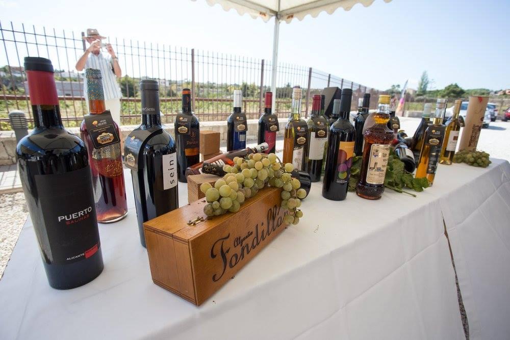 alejandra-quereda-inaugura-la-vendimia-de-los-vinos-alicante-dop-en-teulada-5