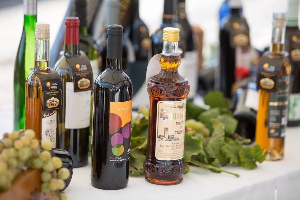 alejandra-quereda-inaugura-la-vendimia-de-los-vinos-alicante-dop-en-teulada-7