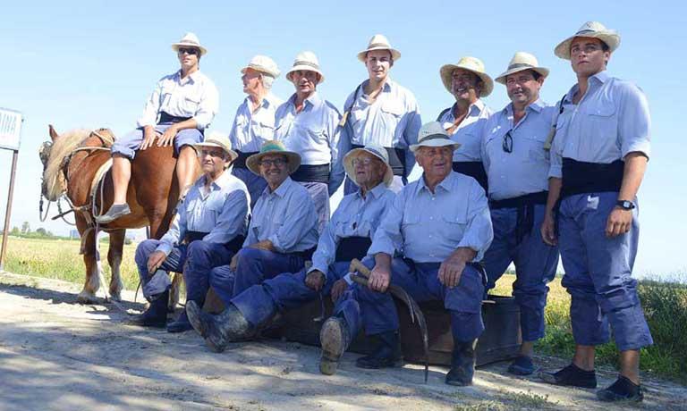 El próximo domingo 25 de septiembre, la D.O. Arroz de Valencia vuelve a organizar la Fiesta de la Siega,