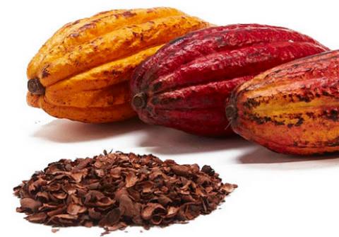 Los antioxidantes del cacaoayudarían a retrasar la aparicióny la progresión de la diabetes tipo 2