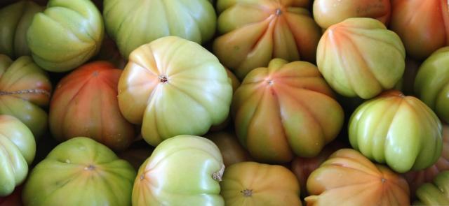 'Arrossària' 2016  un cava hecho a base de tomates del Mareny (Cullera)
