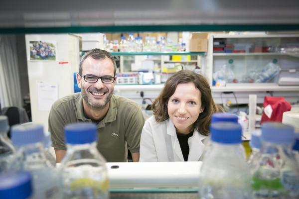 Aznar y Pascual en su laboratorio del IRB. Imagen: IRB