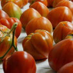Descubren cómo devolverle al tomate su verdadero sabor