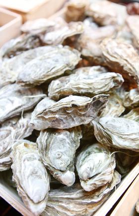 Una década de ostras