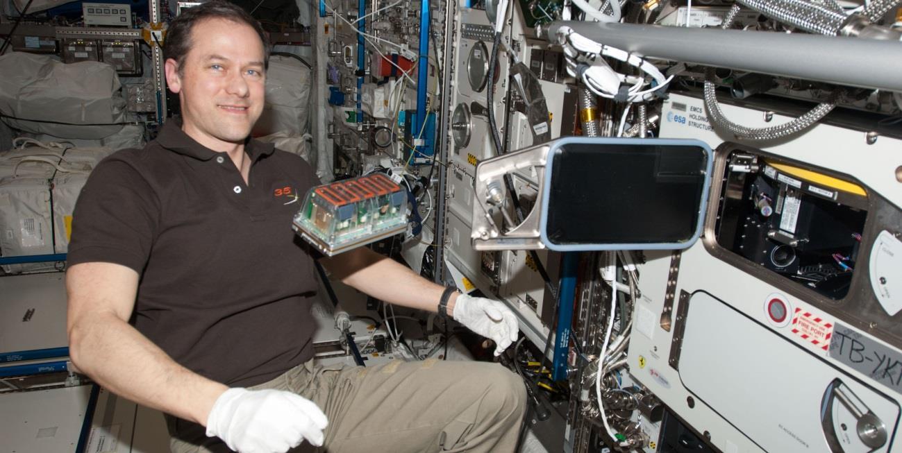 El CSIC lidera un experimento para cultivar plantas en el espacio