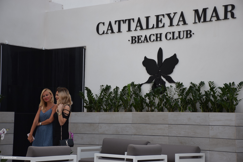 Los alcaldes de l'horta nord y la sociedad valenciana inauguran en el Puig el nuevo Beach club Cattaleya mar