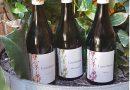 Cantalares, nuevos vinos de bodegas el Villar en busca de la diferenciación
