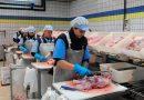 El empleo en el sector de la alimentación representa ya un 3,8% del total de empleos en la Comunidad Valenciana, frente al 0,4% del año anterior