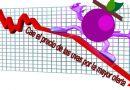 Cae el precio de las uvas por la mayor oferta