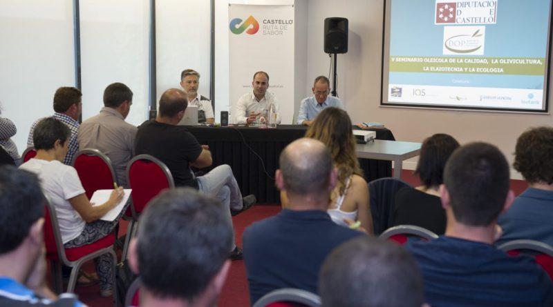 La Diputación promocionará el aceite de la provincia con el IX Seminario de Olivicultura y Elaiotécnia 'Castelló Ruta de Sabor'