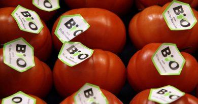 Un estudio demuestra que los alimentos ecológicos no son más sanos