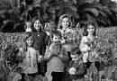 El Institut Valencià de Cultura continúa en La Filmoteca el ciclo sobre alimentación sostenible