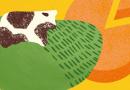 Ya está en marcha cheese 2019, dedicado a los quesos de leche cruda