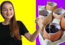 Cómo hacer diferentes mini invernaderos para tus plantas con cosas de casa reciclando
