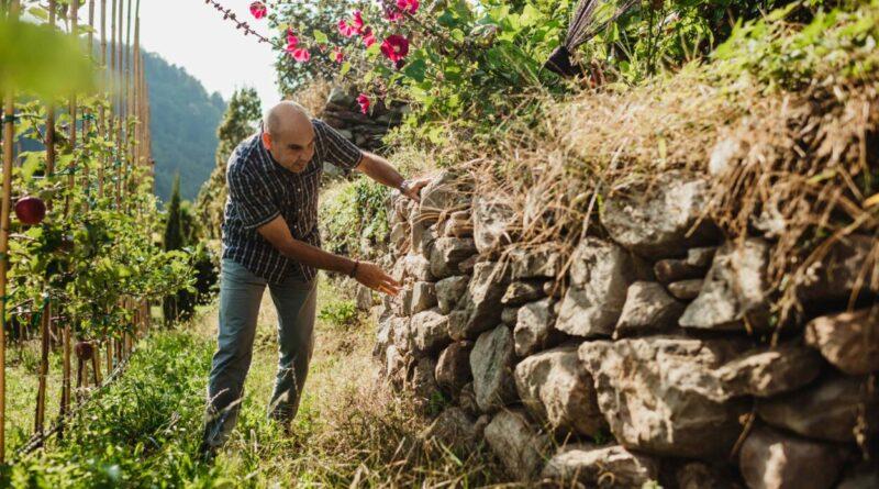 El ecosistema de Val Venosta, donde crecen las manzanas más apreciadas de Europa
